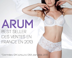 Best-seller en France en 2013